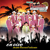 Play & Download En Vivo Desde Tierra Caliente by Los Pajaritos De Tacupa | Napster