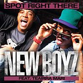 Play & Download Spot Right There by New Boyz | Napster