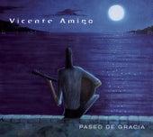 Play & Download Paseo De Gracia by Vicente Amigo | Napster