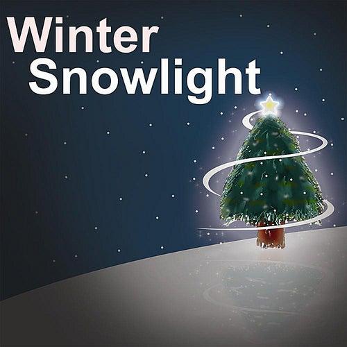 Winter Snowlight by Daniel Oechsner