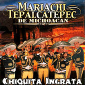 Play & Download Chiquita Ingrata by Mariachi Tepalcatepec De Michoacan | Napster
