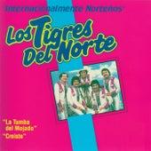 Play & Download Internacionalmente Norteños by Los Tigres del Norte | Napster