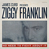 No Need To Fight About It by Ziggy Franklin