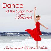 Play & Download Dance of The Sugar Plum Fairies - Instrumental Christmas Music by Instrumental Christmas Music | Napster