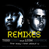The Way I Feel About U-REMIXES by Todd Terry