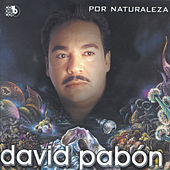 Play & Download Por Naturaleza by Various Artists | Napster