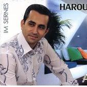 Im Sern Es by Harout Balyan