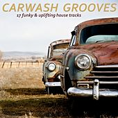 Carwash Grooves by Various Artists