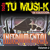 Tu Musi-k Instrumental, Vol. 2 by Various Artists