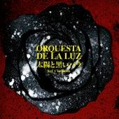 Play & Download Sol y La Rosa by Orquesta De La Luz | Napster