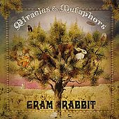 Play & Download Miracles & Metaphors by Gram Rabbit | Napster