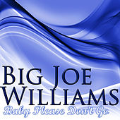 Play & Download Baby Please Don't Go by Big Joe Williams | Napster