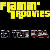 Play & Download In The USA by The Flamin' Groovies | Napster