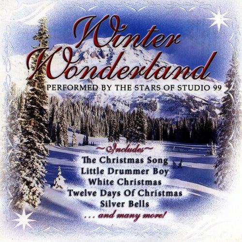 Play & Download Winter Wonderland by Studio 99 | Napster