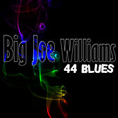 Play & Download 44 Blues by Big Joe Williams | Napster