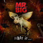 Play & Download What If... by Mr. Big | Napster