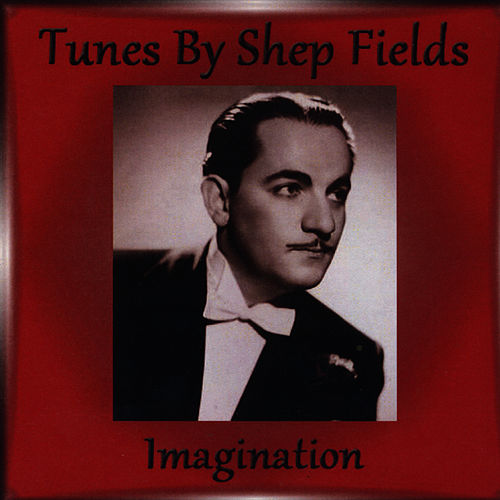 Imagination by Shep Fields