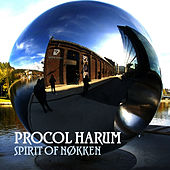 Spirit Of Nøkken by Procol Harum