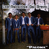 Play & Download Paloma by Los Rebeldes del Bravo | Napster