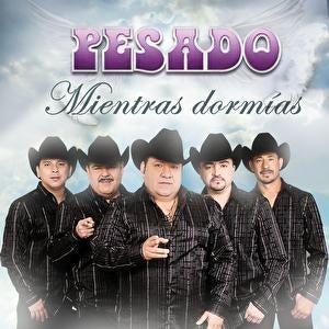 Play & Download Mientras Dormias by Pesado | Napster