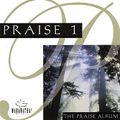 Praise 1 - The Praise Album by Various Artists