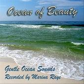 Ocean of Beauty by Marina Raye