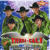 Play & Download Primeros Destellos by Tierra Cali | Napster