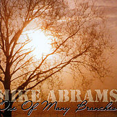 One of Many Branches by Mike Abrams