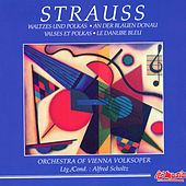 Play & Download J. Strauss Sr. & J. Strauss Jr.: Waltes and Polkas - On The Beautiful Blue Danube by Orchestra of Vienna Volksoper | Napster