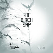 Play & Download Birch Sap by Raf | Napster