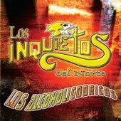 Play & Download Los Alcoholicodricos by Los Inquietos Del Norte | Napster