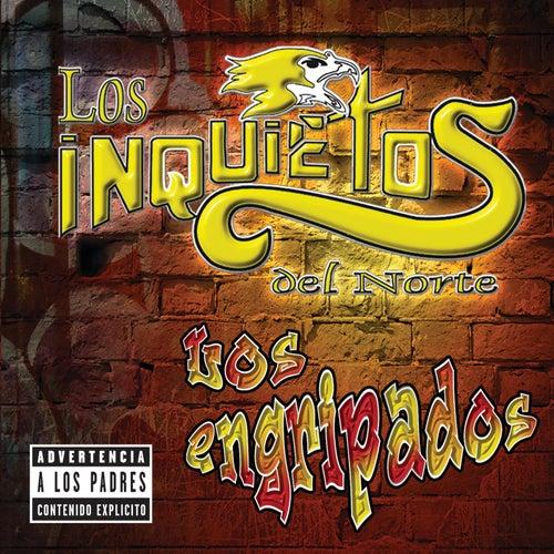 Play & Download Los Engripados by Los Inquietos Del Norte | Napster