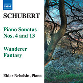 Play & Download Schubert: Piano Sonatas Nos. 4 & 13 - Wanderer Fantasy by Eldar Nebolsin | Napster