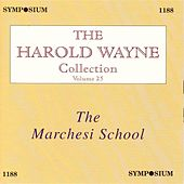 The Harold Wayne Collection, Vol. 25 (1902-1937) von Various Artists
