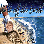 Play & Download Smooth Like Stone On a Beach by Walk off the Earth | Napster