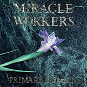 Play & Download Primary Domain by Miracle Workers | Napster