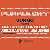 Gun Go (feat. Juelz Santana, Jim Jones & Un Kasa) (12