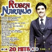 Play & Download 20 Hits Vol. 2 by Ruben Naranjo | Napster
