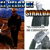 Play & Download El Chingon De Chingones by El Veloz De Sinaloa | Napster