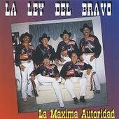 La Maxima Autoridad by La Ley Del Bravo