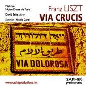 Franz liszt liebestraum poem
