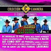 Play & Download 15 Exitos by Los Alegres De La Sierra | Napster