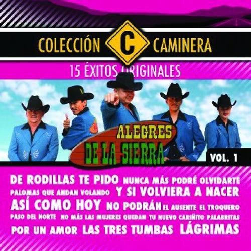 Play & Download 15 Exitos by Los Alegres De La Sierra | Napster