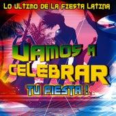 Vamos A Celebrar - Lo Ultimo De La Fiesta Latina by David & The High Spirit