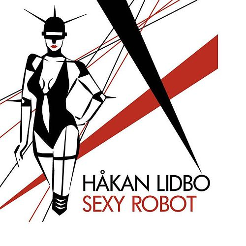 Sexy Robot by Hakan Libdo