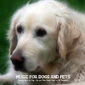 Play & Download Music for Dogs and Pets - Relaxing Music for Dogs, Cats and Other Friends. Music for Pet Relaxation by Pet Music World | Napster