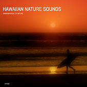Play & Download Hawaiian Nature Sounds Collection - Hawaii Meditation and Relaxation Sounds of Nature by Hawaiian Music of Nature | Napster