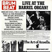 Play & Download Live At the Barrel Organ by Various Artists | Napster