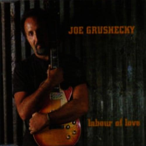 Labour Of Love by Joe Grushecky