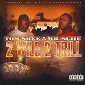 Play & Download 2 Wild 2 Trill by Mr. Sche | Napster